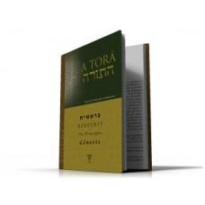 TORÁ, A - Volume 1 - Bereshit (Gênesis)